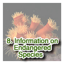 Information on Endangered Species