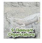 Relevant Organizations