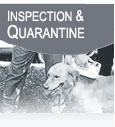 Inspection & Quarantine