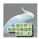 濒  危  野  生  动  植  物  种  国  际  贸  易  公  约