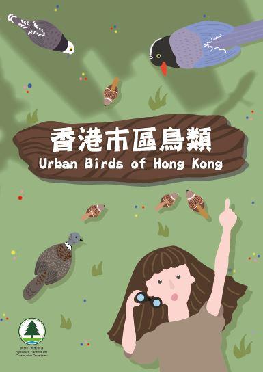 香港市区鸟类-单张