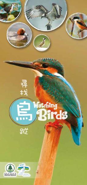 寻 找 鸟 踨