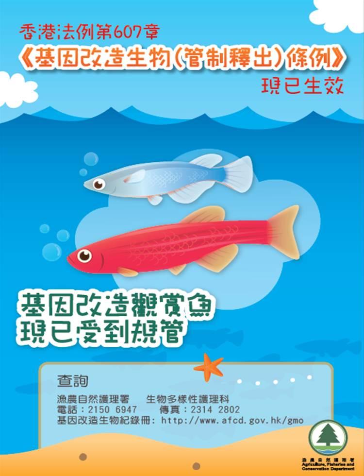 基 因 改 造 观 赏 鱼 - 简 化 版