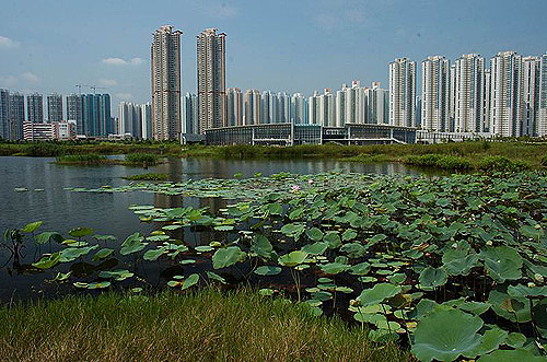 (圖片)香港濕地公園