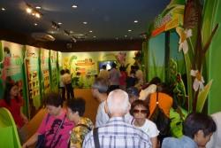狮 子 会 自 然 教 育 中 心 昆 虫 馆