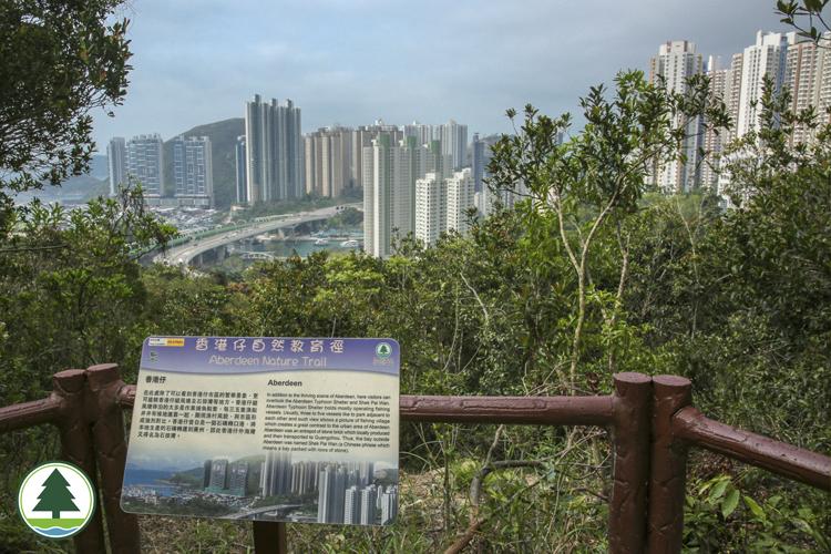 眺望香港仔及鸭利洲