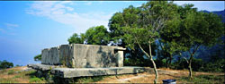 松 林 炮 台