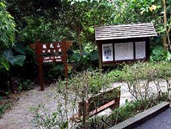 龙 虎 山 郊 野 公 园