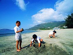 海 湾 沙 滩