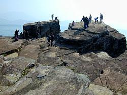 东 平 洲 更 楼 石