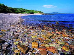 东平洲石滩