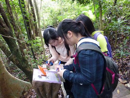 Orienteering Trail